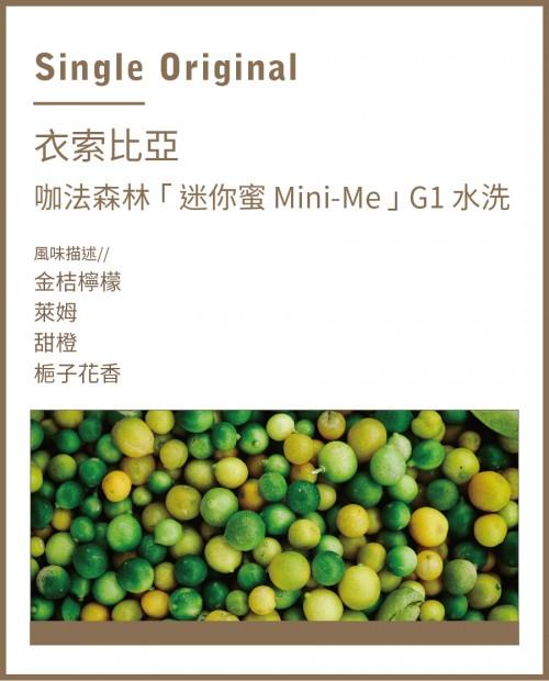 衣索比亞 咖法森林「 迷你蜜 Mini-Me 」G1 水洗